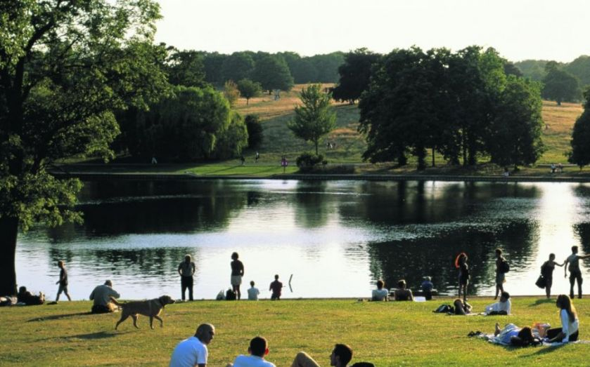 Focus On Highgate: Why this north west suburb has been the garden ...
