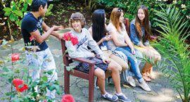 Londra'daki gençler için İngilizce kursları ve Yaz Kampları | LSI